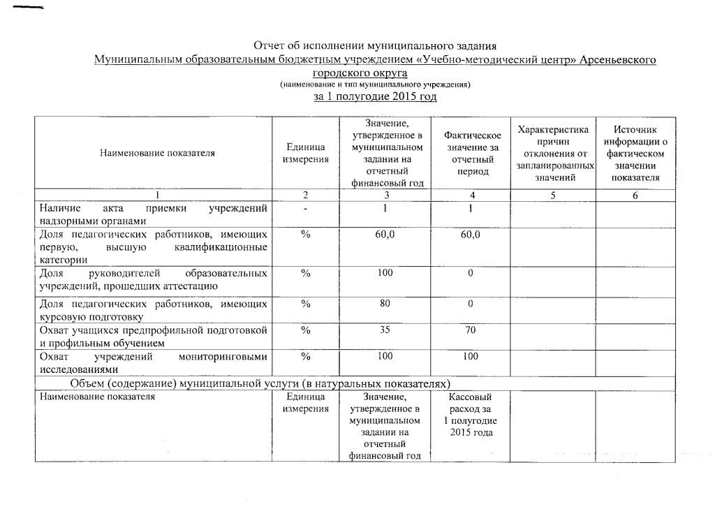 Отчет за полугодие_1 от 15.07.2015г.